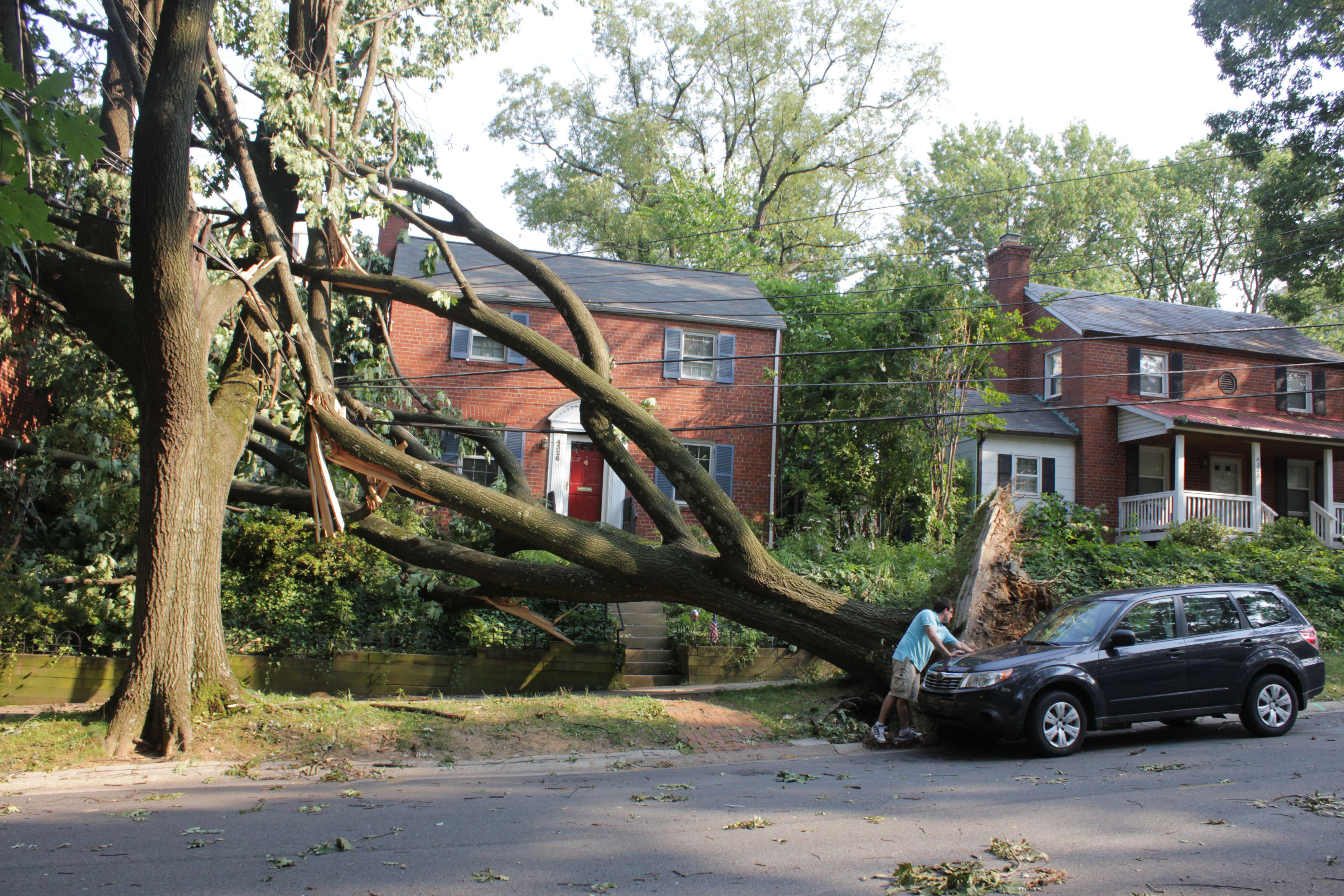 Derecho Woodley Park Homeowners Insurance Homeowner Buy Health