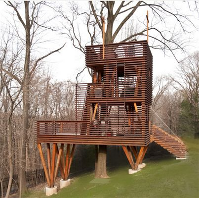 This Japanese Lantern Treehouse is absolutely stunning. A little investment, perhaps?