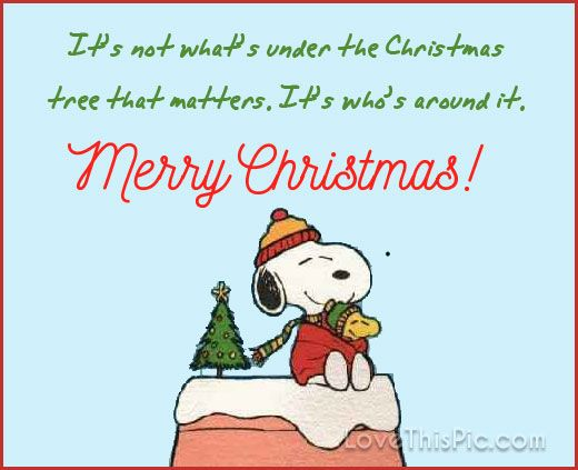 Merry Christmas Merry Christmas Quotes Christmas Quotes For Friends Snoopy Christmas Images