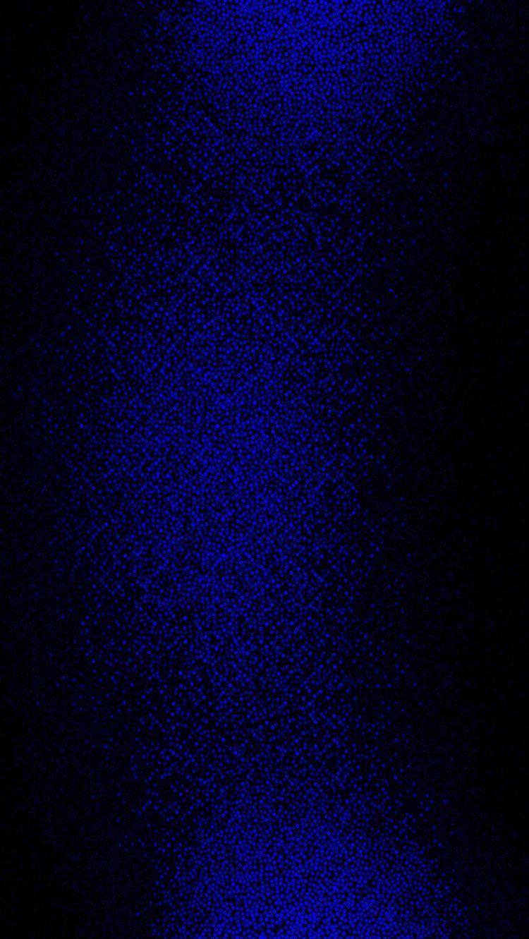 Astheticwallpaperiphoneblack Blue Wallpapers Dark Blue Wallpaper Midnight Blue Color