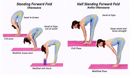 day 4 today's pose is uttanasana standing forward fold