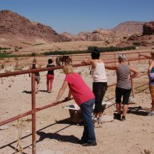 Equine coaching in Little Petra