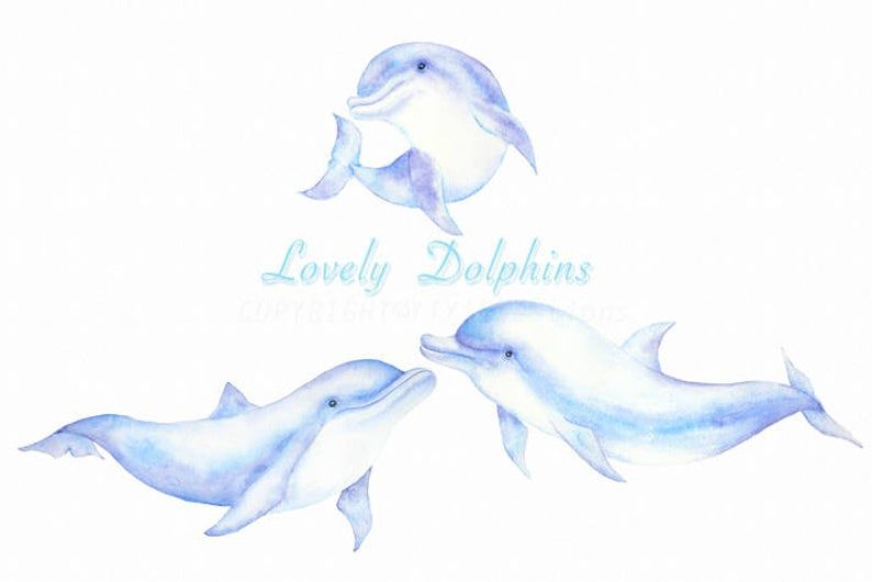 Watercolor Hand Painted Sea Creature Dolphins Clipart Mom And Etsy Dolphin Clipart Dolphin Images Clip Art