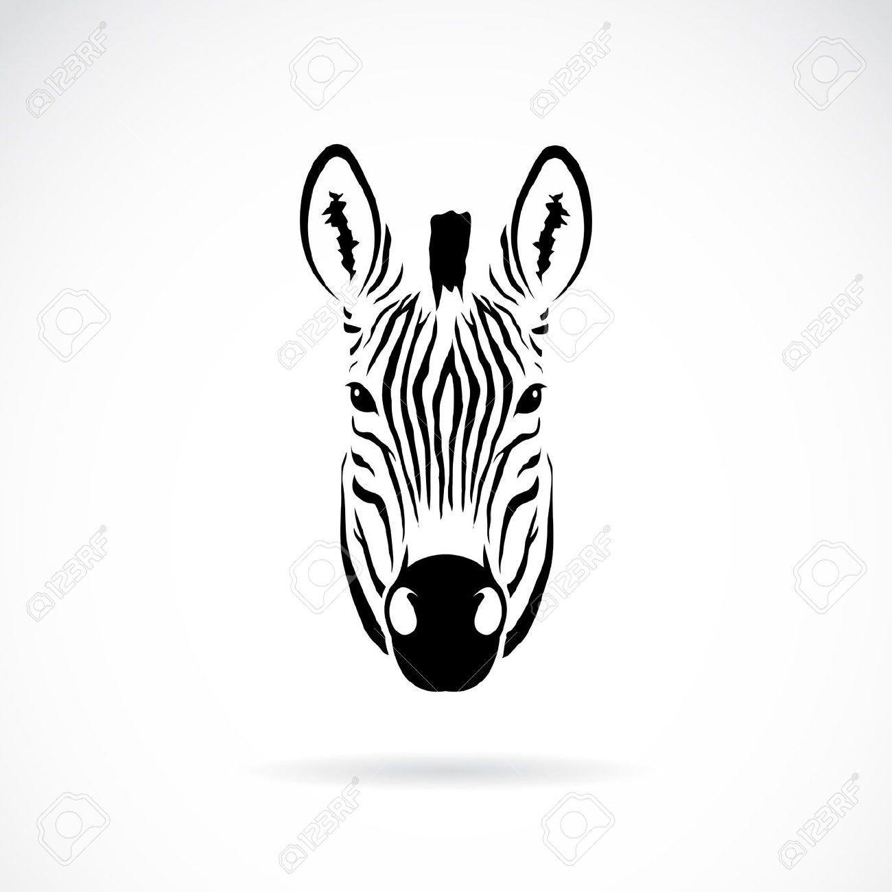 zebra head front on - Google Search | Tattoos | Pinterest | Future ...