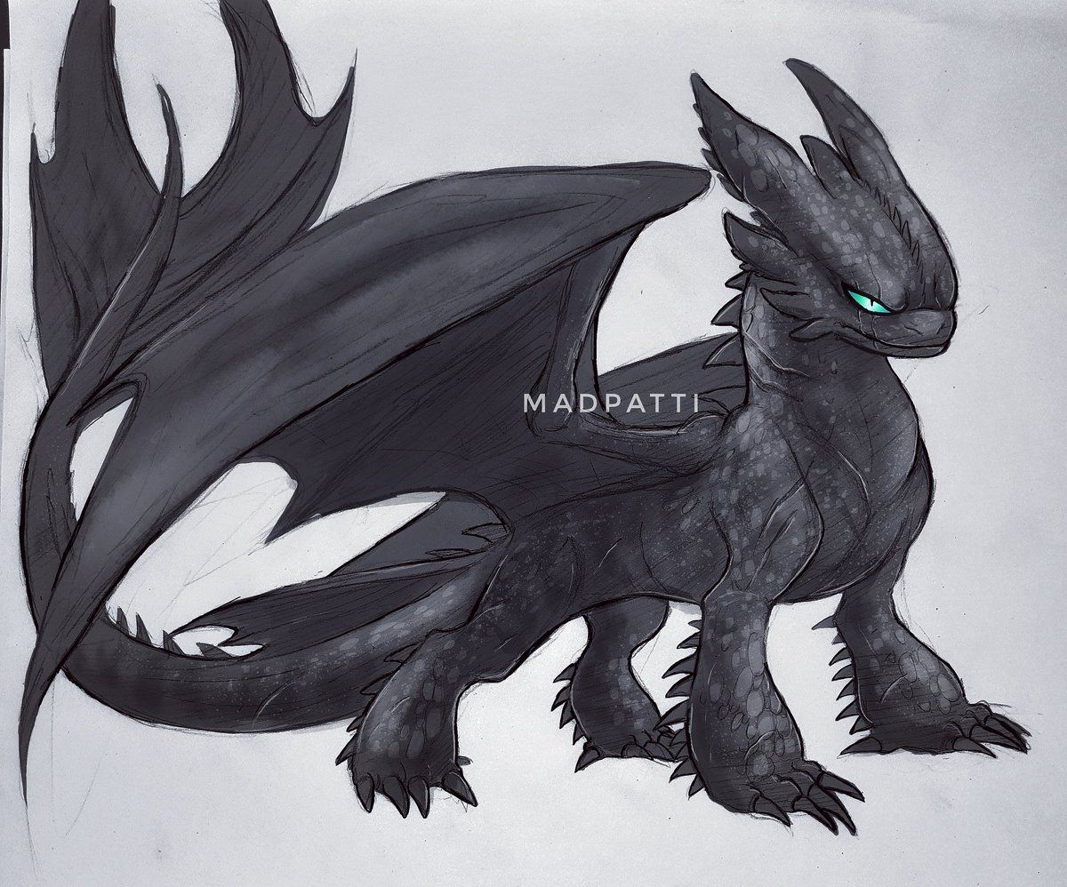 Howtotrainyourdragon Hashtag On Twitter How Train Your Dragon Night Fury Dragon Dragon Pictures