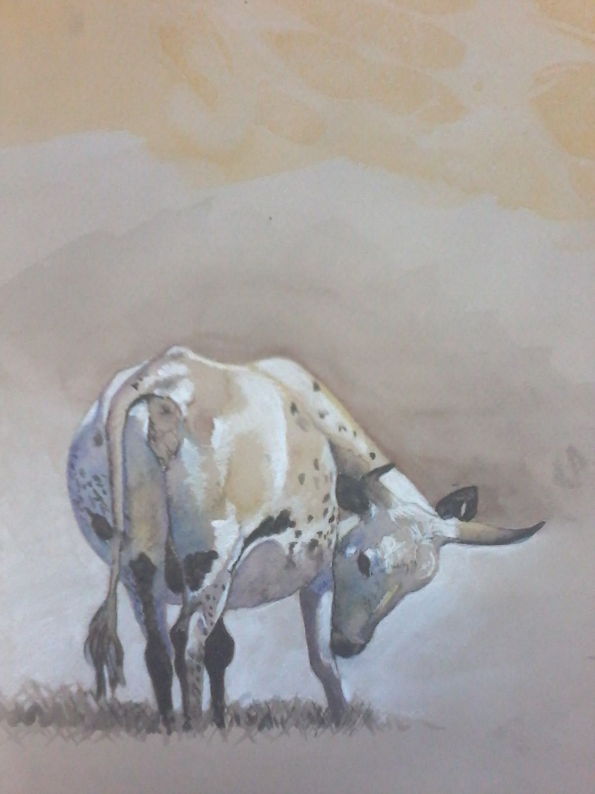 water colour cow painting art by tess reid u0027s fine art cow