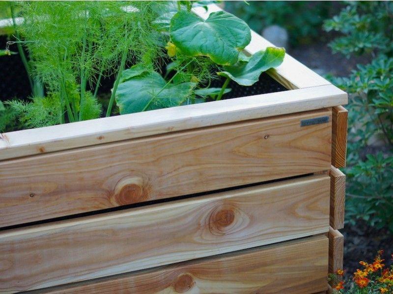 Hochbeet Holz Lange 200 Cm In 2020 Hochbeet Hochbeet Holz Pflanzkasten
