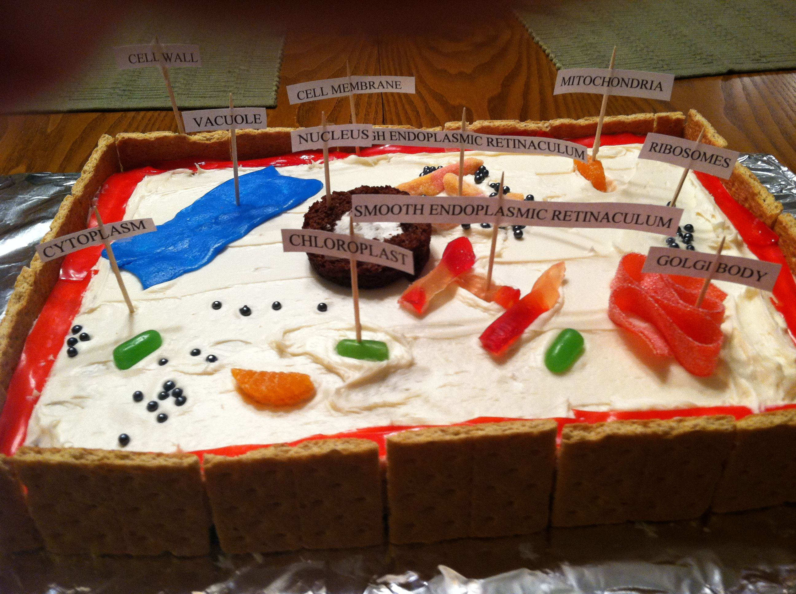 Kids Cell Projects For School Using A Cake