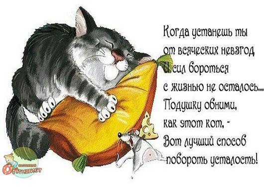 Пин от пользователя Наталья Козел на доске картинки ...
