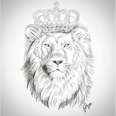 Image Result For Lion With Crown Drawing Lion Sketch Lion Head Tattoos Lion Tattoo 300 x 300 gif 17 кб. lion with crown drawing lion sketch
