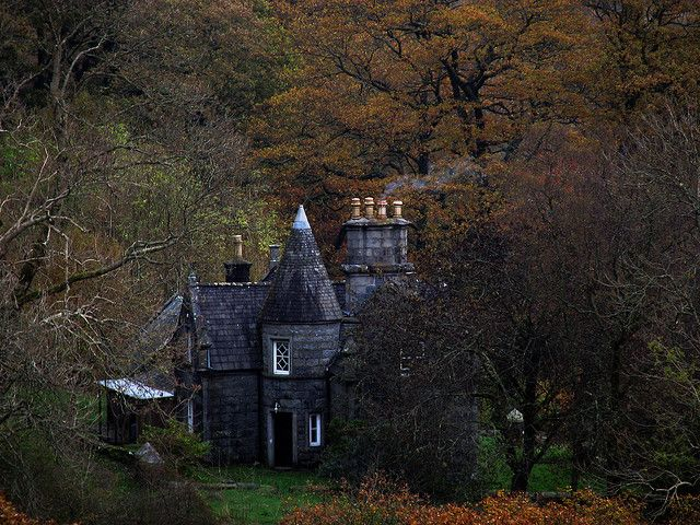 chateau in the woods