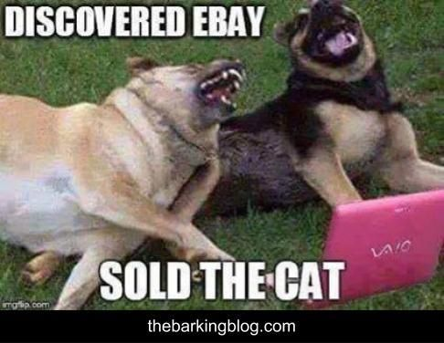 A funny and humorous dog meme, depicting two dogs lying down together in a field and seemingly laughing! One dog is saying to the other dog that she has discovered ebay and has now sold the cat! #thebarkingblog #dogs #dogmemes