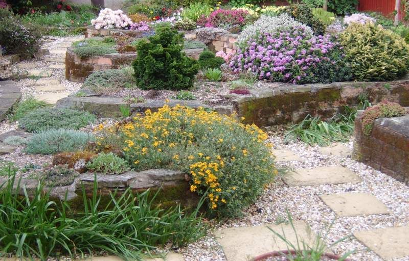 Amazing Alpine Garden Design Love The Raised Flower Beds Inspiration Alpine Garden Design