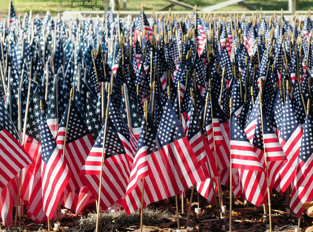 Memorial Day   Photo of a sea of American Flags on this