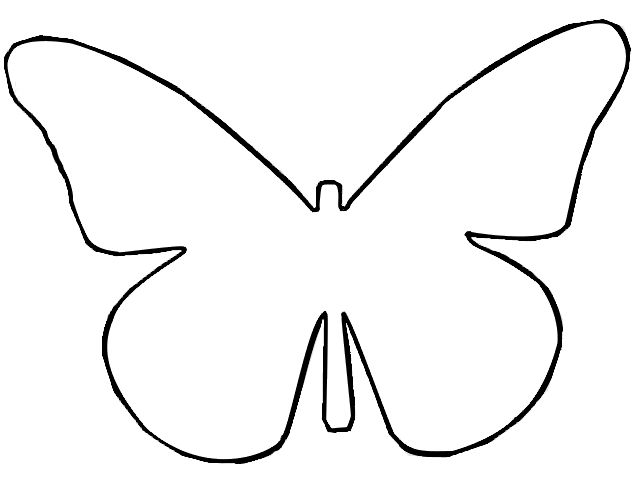 Outline butterfly template d