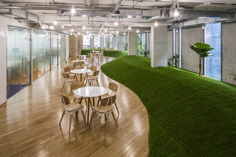 Green Office Spaces Simulate Parks To Promote Productivity And