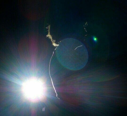Contra luz