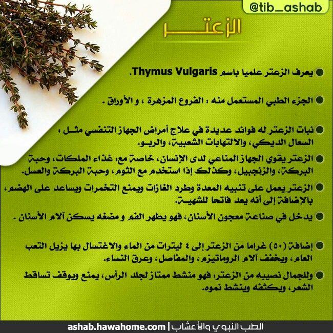 الطب النبوي والتداوي بالاعشاب فوائد نبات الزعتر Health Signs Natural Medicine Healthy Life