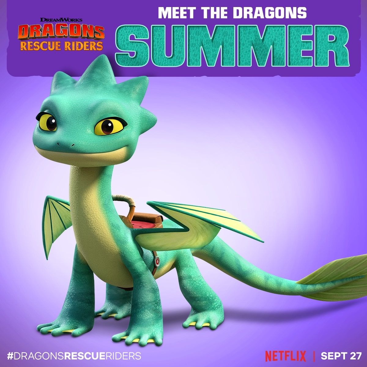 Pin By Sarah Bopp On Dreamworks Dragons Rescue Riders 2019 How To Train Your Dragon Dragon Birthday Parties Dragon Birthday