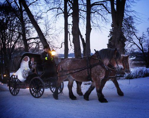 Vinterbröllop med häst och vagn