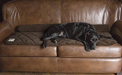 Wondrous Dog Bed Covers Orvis Improved Furniture Protector Only Gmtry Best Dining Table And Chair Ideas Images Gmtryco