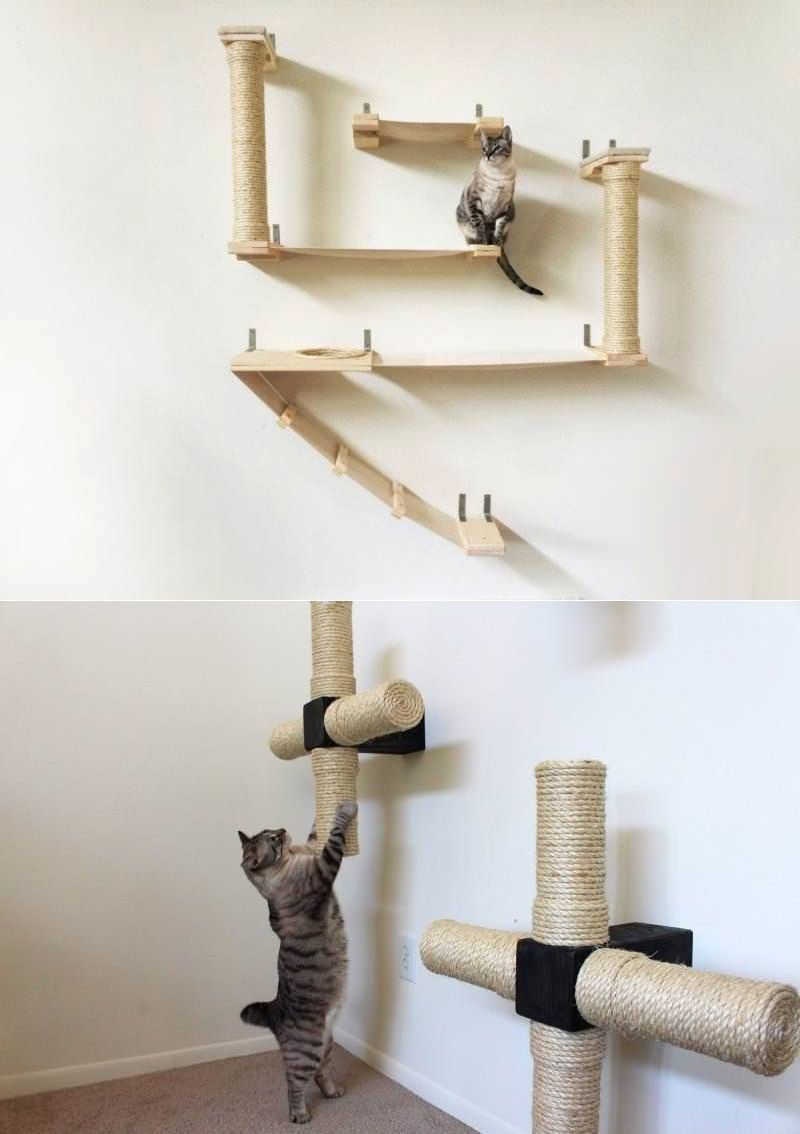 Catastrophic Creations Wall Mounted Cat Furniture For Notorious