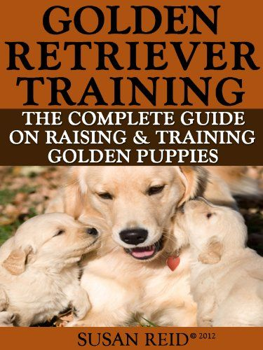 Golden Retriever Training Breed Specific Puppy Training