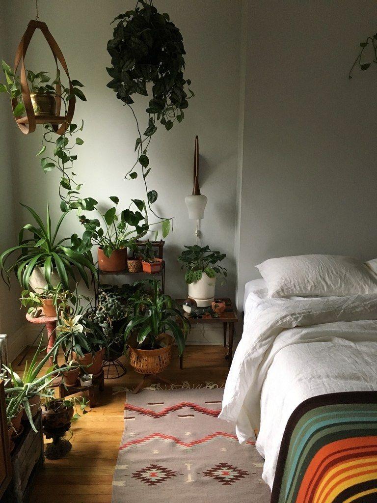 Aesthetic Bedroom With Plants : aesthetic, bedroom, plants, Tricks, Growing, Happy, Houseplants, Apartments, Aesthetic, Bedroom,, Indoor, Plants, Inspiration, Bedroom