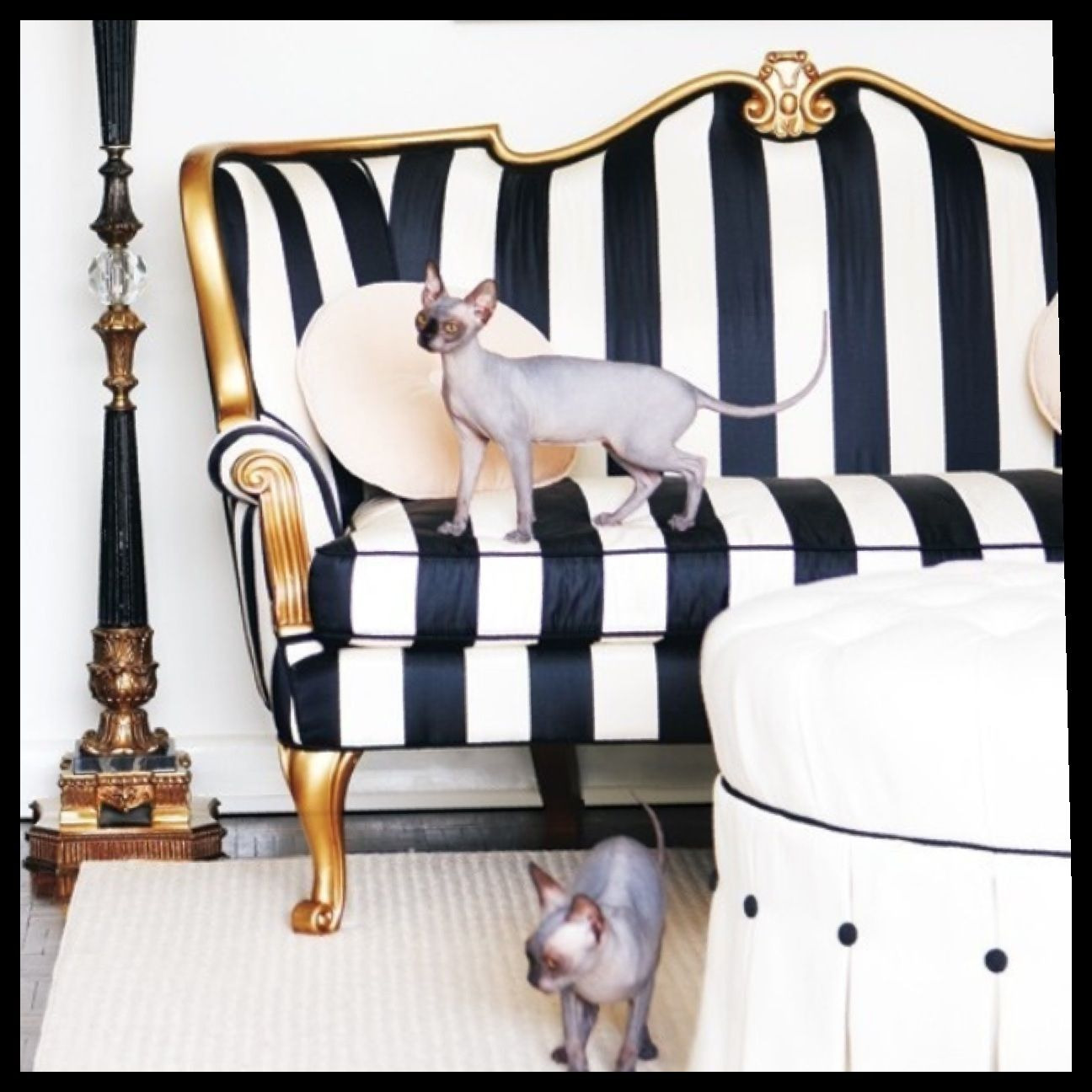 Love The Victorian Couch W New Striped Fabric Black And White