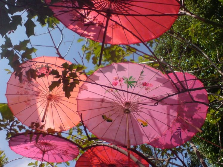 Pin By Chez Toi Design On Embies 1st Umbrella Pink And Orange Paper Parasol