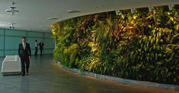 Jardín vertical de interior de la oficina HOTEL FLORAL Pinterest