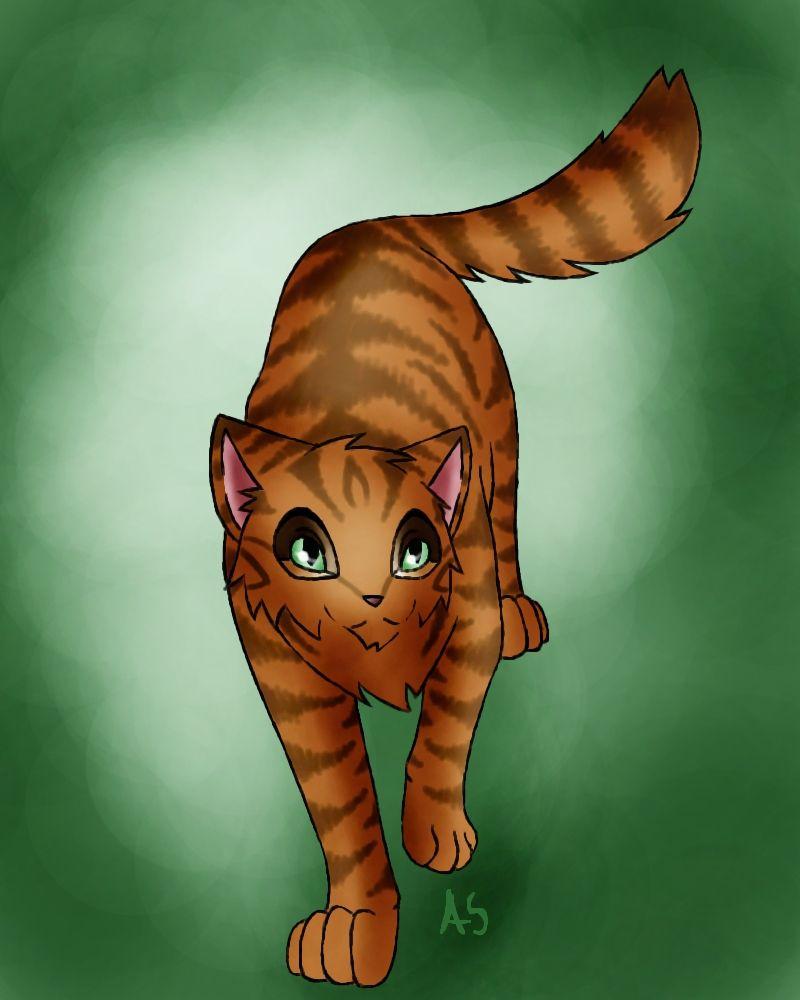 Коты-воители березовик картинки