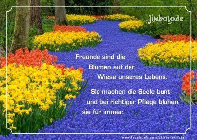 Freunde Sind Die Blumen Auf Der Wiese Unseres Lebens Sie Machen Die