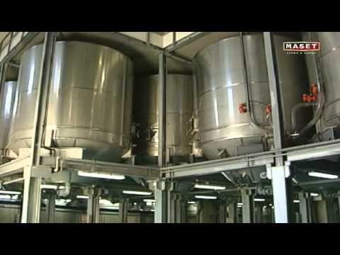 8 - La vinificación del vino tinto
