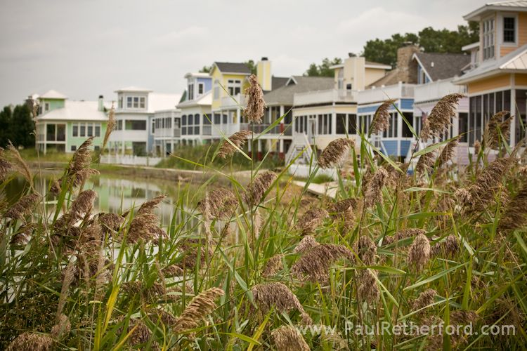 Beachwalk Resort Wedding Photographer Michigan City Lake