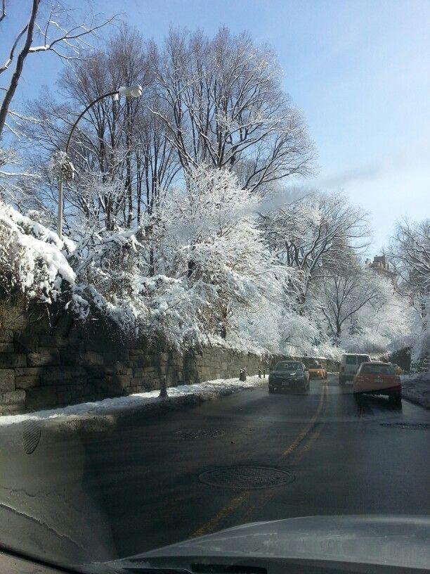 Cental park - a nyc snowy morning
