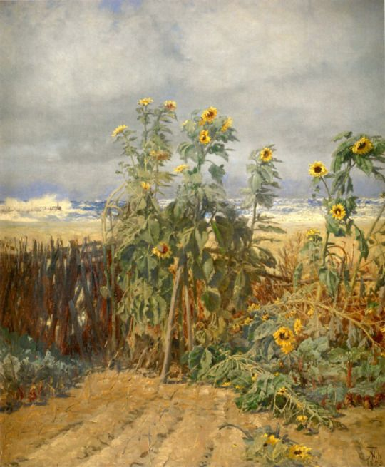 Sunflowers growing on the beach - Thorvald Niss 1842 -1905 Skagen Painters