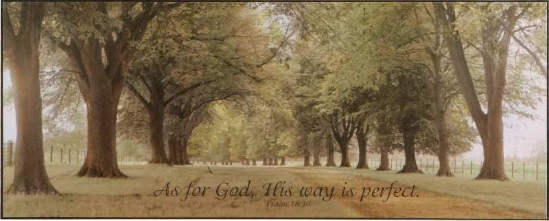 As For God His Way Is Perfect P Graham Dunn Framed Art