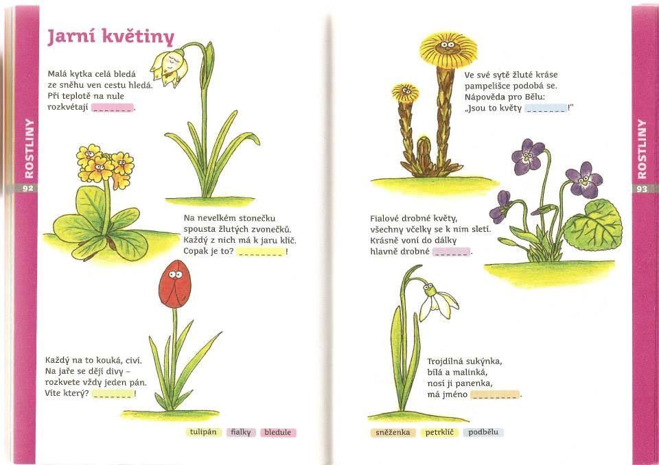 básničky - jarní květiny
