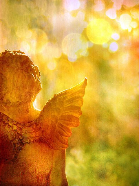 ** beautiful angel...