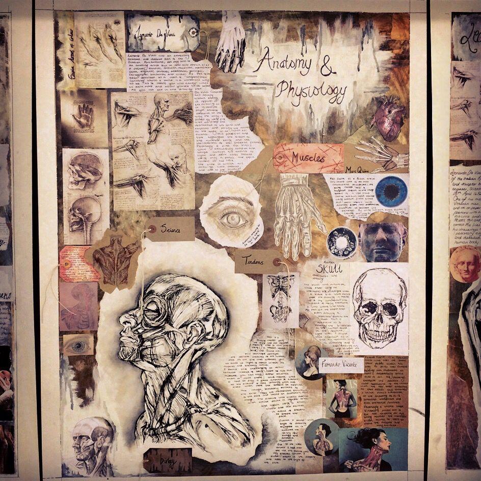 Anatomy & Physiology Y11 | sketchbook | Pinterest | Anatomy ...