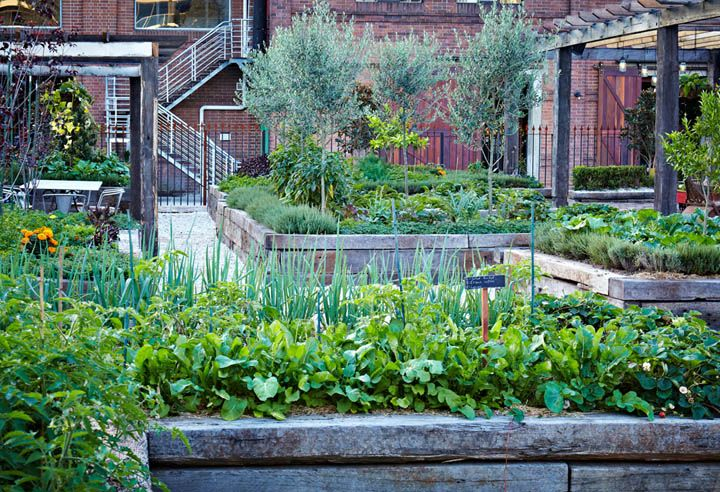 Edible Landscaping: Kitchen Garden   jardin potager   bauerngarten    köksträdgård (The Ground…   The grounds of alexandria, Cafe design  inspiration, Outdoor gardens
