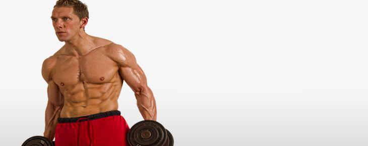 Programme Entrainement Prendre Du Muscle Sec Prendre Du Muscle Muscle Programme Musculation