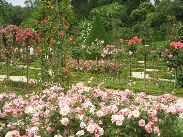 The Rosarium In The Jardins De Bagatelle In Paris Smells Amazing