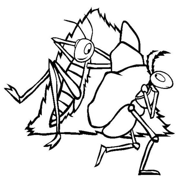 Lazy Grasshopper See Working Ant Coloring Page Coloring Pages
