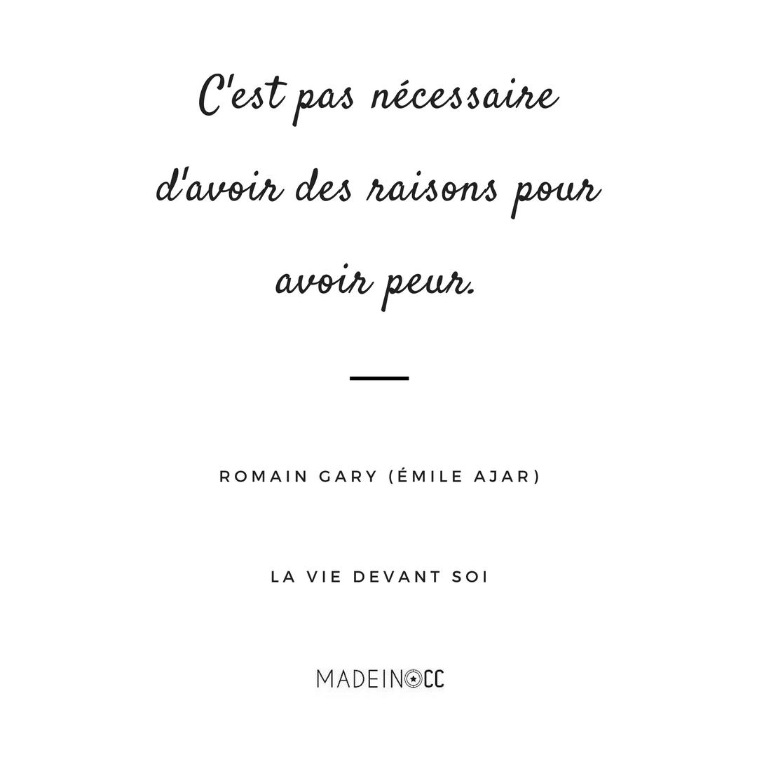 Bien-aimé La vie devant soi, Romain Gary (alias Émile Ajar) - Citation  KU04