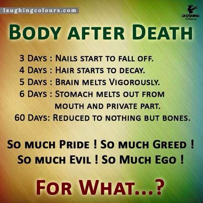 Genial Body After Death