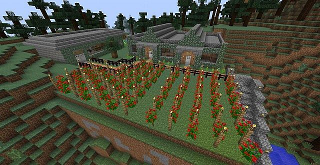 Vineyard, Brewery, and Wine Shop Minecraft Project | MC
