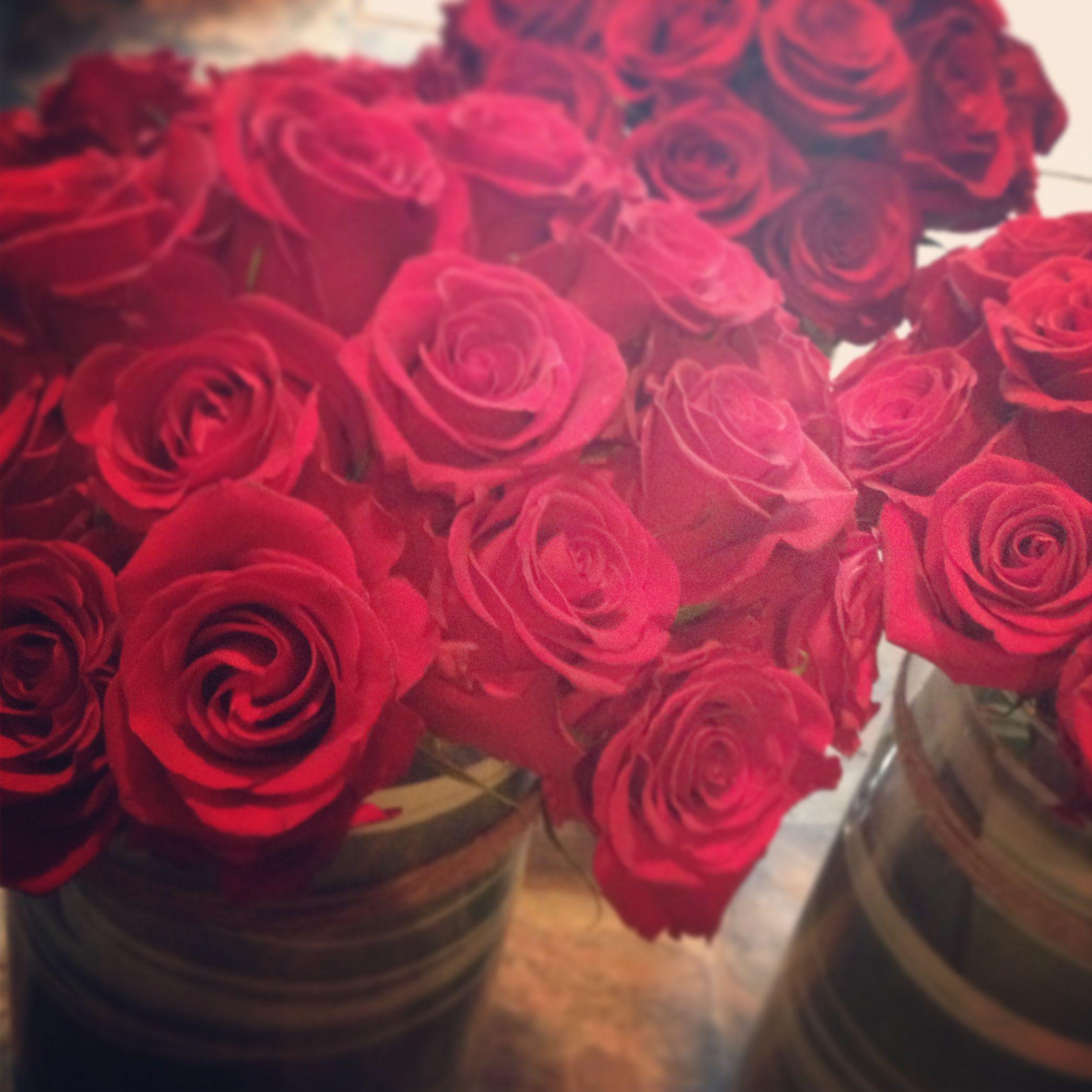 Massed red roses {Botany Floral Studio}