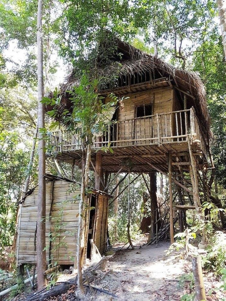 Interesting House Exterior Design In Kulai Malaysia: 7 Gorgeous Nature Retreats In Malaysia For A Unique Getaway